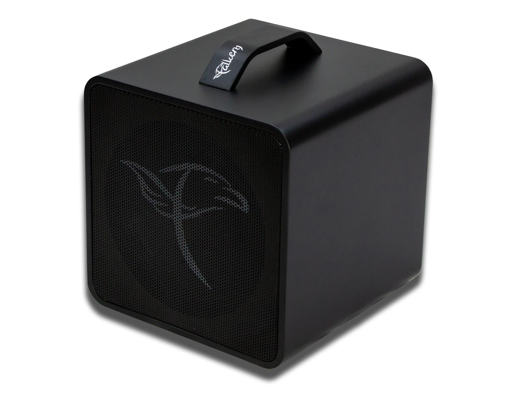 Falken1 Traveller Akustik Amp black
